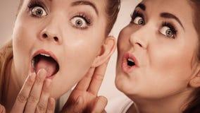2 женщины говоря сплетню Стоковое Фото