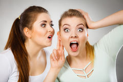2 женщины говоря сплетню Стоковое Изображение RF