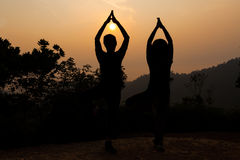 2 женщины делая дерево йоги представляют в силуэте во время восхода солнца Стоковое фото RF