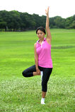 Женщины делая йогу в парке Стоковые Изображения RF