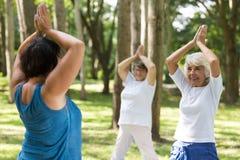 Женщины делая йогу в парке Стоковая Фотография