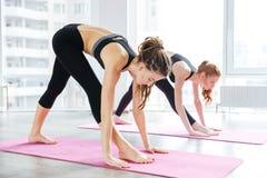 2 женщины делая тренировки в центре йоги Стоковые Изображения RF