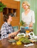 2 женщины заваривая травяной чай Стоковые Фото