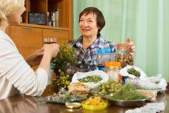 2 женщины заваривая травяной чай Стоковое Изображение