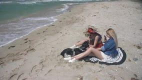 Женщины замедленного движения 2 молодые сексуальные ослабляя на песчаном пляже с собакой и фотографируя она по телефону сток-видео