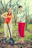 Женщины засаживая дерево на саде стоковое изображение