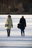 Женщины заднего взгляда модные идя тщательно на замороженное озеро в замерзать солнечная зима Стоковые Изображения RF