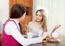 Женщины злословя и выпивая чай Стоковые Изображения RF