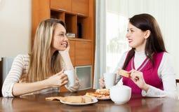 Женщины злословя и выпивая чай Стоковое Фото