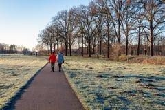 2 женщины идя вдоль пути среди замороженной травы стоковое изображение rf
