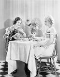 2 женщины имея чай совместно (все показанные люди более длинные живущие и никакое имущество не существует Гарантии поставщика кот Стоковое Фото
