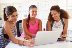 Женщины используя компьтер-книжку в современном офисе начинают вверх дело Стоковая Фотография