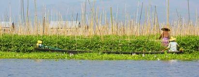 Женщины и плавая сады в озере Inle, Мьянме Стоковые Фото
