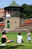 Женщины и ребенок сидя на траве, Tamworth стоковое изображение rf