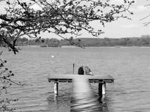 2 женщины и собака на пристани озера в черно-белом Стоковая Фотография RF