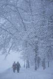 2 женщины идут в снежный день Стоковые Фото