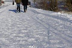2 женщины идя в зиму Стоковое Изображение RF