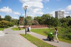 2 женщины идя с prams в парке Стоковая Фотография
