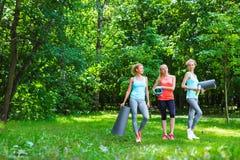 Женщины йоги группы в парке Стоковая Фотография RF