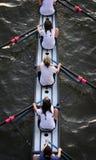 женщины команды rowing Стоковое Изображение