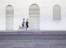 женщины любимчика собаки jogging Стоковое фото RF
