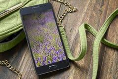 Женщины мобильного телефона и сумки Стоковые Фотографии RF