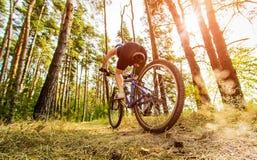 Женщины на велосипеде Стоковое фото RF