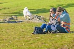 Женщины на парке, Punta del Este, Уругвае Стоковое Фото