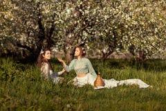 2 женщины на пикнике Стоковое Изображение RF