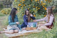 3 женщины на пикнике Стоковая Фотография RF