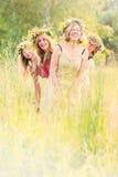 4 женщины на луге с яростями Стоковые Изображения RF