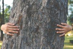 Женщины обнимают большое дерево Стоковое Фото