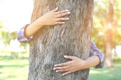 Женщины обнимают большое дерево Стоковые Фото
