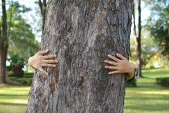 Женщины обнимают большой цвет дерева тона битника Стоковые Фотографии RF