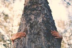 Женщины обнимают большой цвет дерева тона битника Стоковое Изображение RF