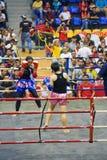 женщины пинком s бокса действия Стоковое Фото