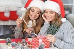 2 женщины празднуя рождество Стоковые Фотографии RF