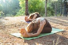 2 женщины практикуя йогу в древесине Стоковое Изображение RF