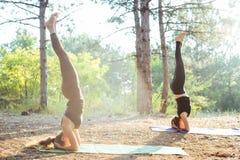 2 женщины практикуя йогу в древесине Стоковая Фотография