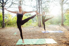 2 женщины практикуя йогу в древесине Стоковое фото RF