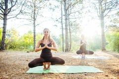 2 женщины практикуя йогу в древесине Стоковые Изображения RF