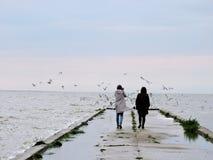 2 женщины приближают к озеру Стоковое фото RF