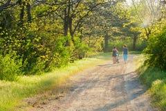 2 женщины при ребенок гуляя до конца в парке Стоковые Фотографии RF
