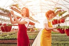 Женщины работая в оранжерее стоковое изображение