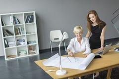 Женщины работая в офисе Стоковые Изображения RF