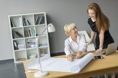Женщины работая в офисе Стоковая Фотография RF