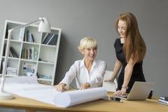 Женщины работая в офисе Стоковые Фото