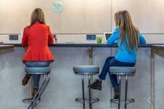 2 женщины работая на компьютерах на деревянной таблице стены Стоковая Фотография RF
