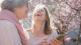 2 женщины смотрят фото в смартфоне и смеются весело Мать и дочь говорят пока стоящ внутри видеоматериал