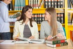 Женщины смотря один другого пока изучающ внутри Стоковое Фото